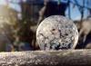 bolla di sapone.png