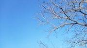 B612_20210325_160434_506.jpg
